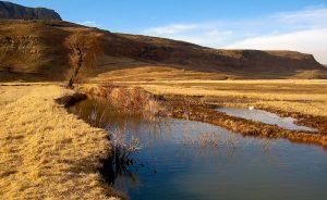 South Africa wetland